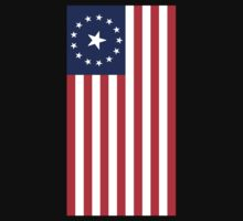 FALLOUT 3 AMERICAN FLAG by 2E1K