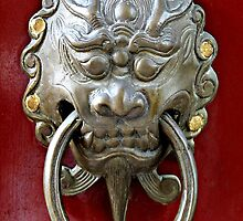 Knocker on Heaven's Door © by Ethna Gillespie