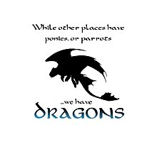 We Have Dragons (Blue) Photographic Print