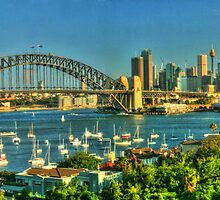 Sunny Sydney Harbour pano 1 by Michael Matthews
