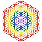 Chakra Flower of Life Sacred Geometry 1 by haymelter