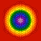 Chakra Flower of Life Sacred Geometry 2 by haymelter
