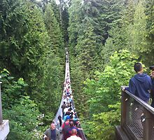 Capilano Suspension Bridge -- Vancouver, BC, Canada by travisferrell