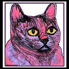 Purple Pink Kitty by amanda metalcat