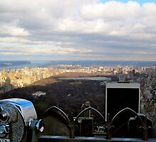 Top of the Rock by Sandra Schnellhaus