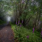 A Road To My Dreams by Charles & Patricia   Harkins ~ Picture Oregon