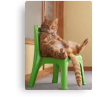 The most chilled out cat! Canvas Print