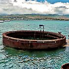 Remnant of the USS Arizona by Martha Sherman