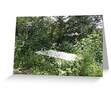 Outdoor Bathing Greeting Card