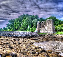 Mahee Castle 2 by rosscaughers