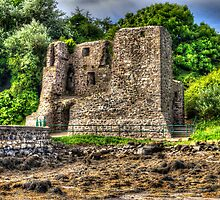 Mahee Castle 3 by rosscaughers