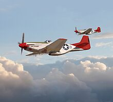 P51 Mustang - Red Tails by warbirds