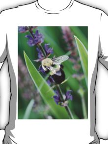 Buzzing in the Blooms T-Shirt