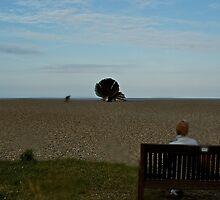 Coastal Landmarks - Sizewell to The Aldeburgh Scallop  by Carl Gaynor
