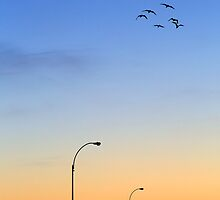 Passage Into Dawn by Evelina Kremsdorf