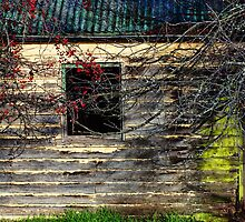 Old House by abeeror2