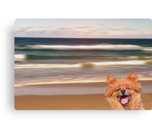 A dog's life Canvas Print