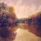 La Nature Splendeur by John Rivera