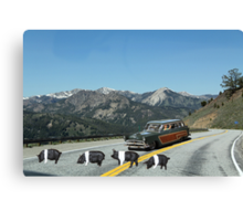 You just can't avoid them!  Even in the mountains Dick encounters road hogs! Canvas Print