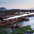 Bass Rock from Carr Rocks by Christopher Cullen