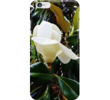 Moment of Magnolia iPhone Case/Skin