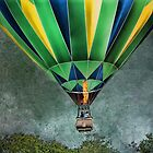 Above the Trees by Dyle Warren
