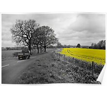 Cheshire | Rapeseed Field 01 Poster