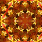Kaleidoscope Geometry Pattern From Nature 15 by Kenneth Grzesik