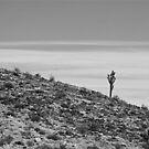 Lone Joshua by Chet  King