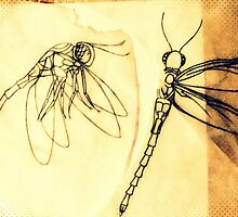 dragonfly stencil by angela brooker