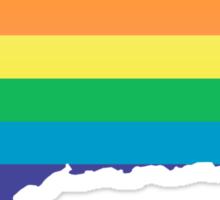 rainbow connecticut Sticker