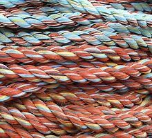 Peterhead Rope by Tideline