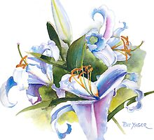 Casa Blanca Watercolor #2 by Pat Yager