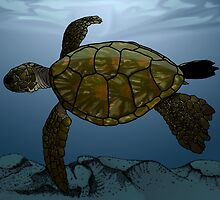 Sea Turtle by Feral Beagle LLC