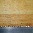 Shark infested breadboard by Richard Davis