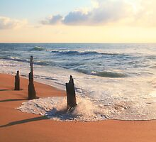 Three old posts at the edge of the surf by Roupen  Baker