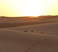 Dubai sunset over desert by EvieRose