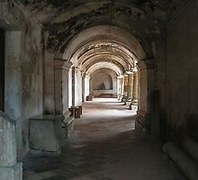Light Inside the Ruin, Guatemala 2009 by heatherfriedman