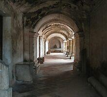 Light Inside the Ruin, Guatemala 2009 by heatherfriedman