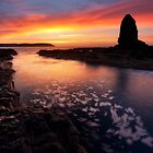 Cape Schanck Dawn by Nick Skinner