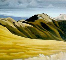 Main Range Tararuas by Patricia Howitt