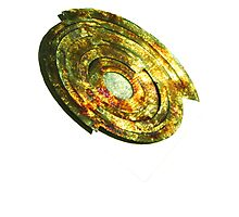 Golden Shield-t Photographic Print