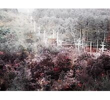 Fractured Landscape III Photographic Print
