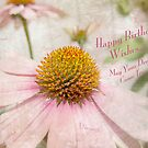 Happy Birthday Wishes by Susan Werby