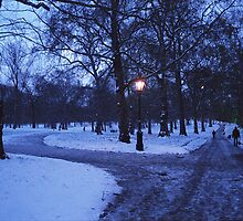 Hyde Park Snow by AntonyDeGennaro