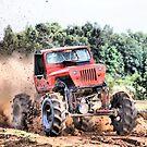 playin' in the mud #2 by GWGantt