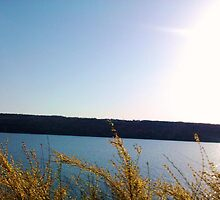 FINGER LAKES CAYUGA LAKE by JoAnnHayden