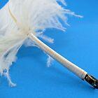 Ostrich quill pen by elsha