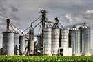 Grain Elevators Near Hampshire Illinois by Roger Passman