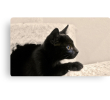 Panther in training Canvas Print